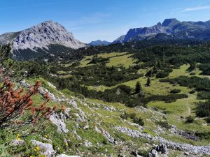 Rakousko Alpy - na treku v rozkvetlém pohoří Hochschwabu