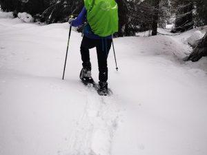 1denní túra v Jizerských/Lužických horách na sněžnicích